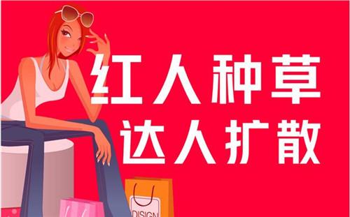 最新干货分享:小红书如何快速涨粉?第1张
