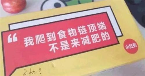 新手运营小红书常犯的八大违规操作第3张