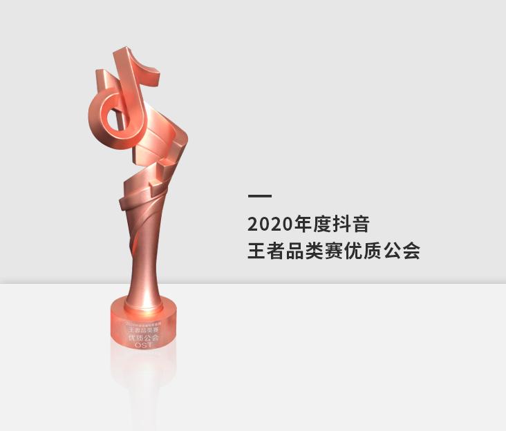 2020年度抖音王者品类赛优质公会